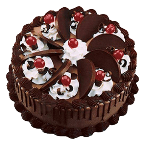 Yummy Chocolate Cake Chandigarh Cakes Delivery Home Delivery of