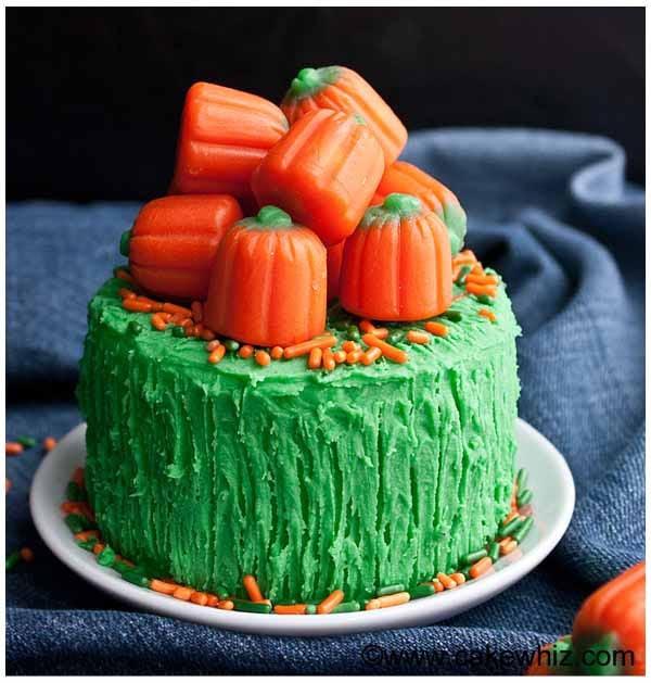 Cake Designs Beginners