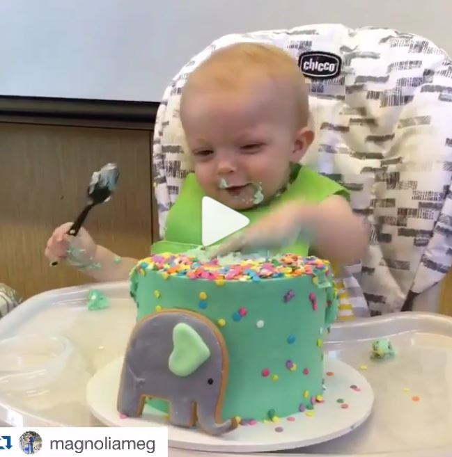 Smash Cakes Are All The Rage At 1st Birthday Parties In Hawaii