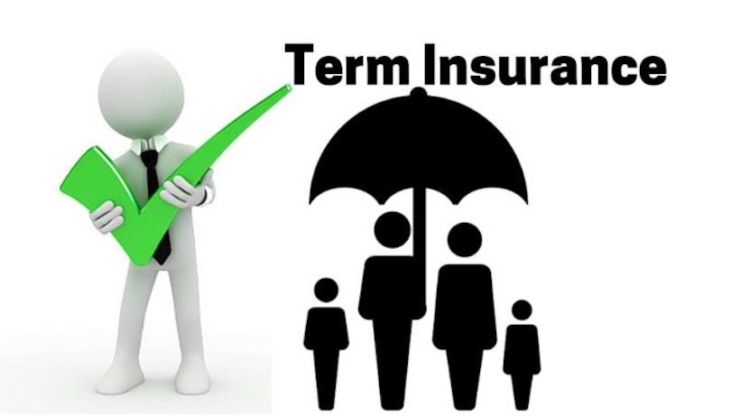 Best Term Insurances