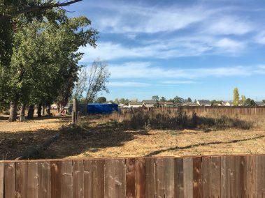 915 Yuba Santa Rosa CA 3