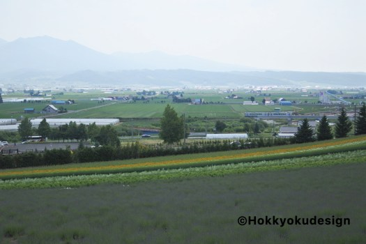 ファーム富田から富良野線展望
