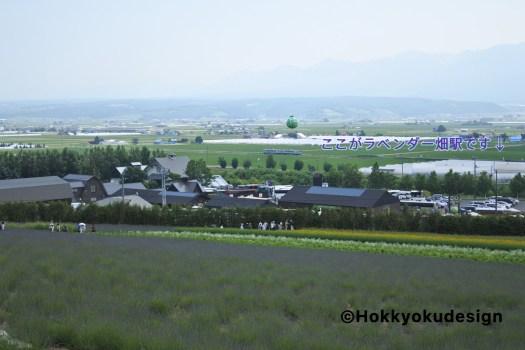 ファーム富田からラベンダー畑駅