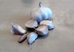 natural remedies winter colds garli italian