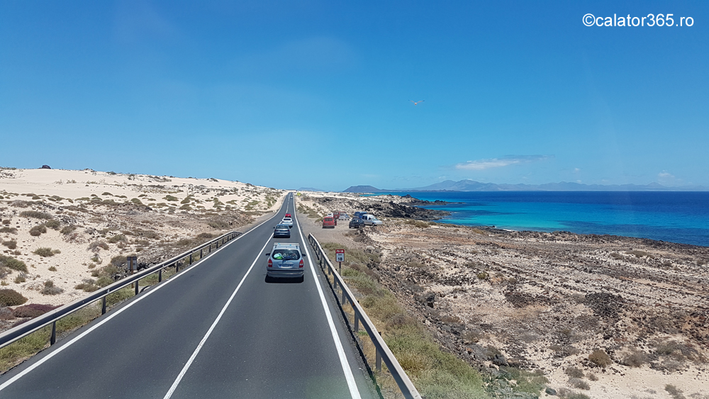 Fuerteventura Transport