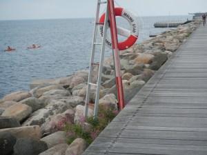 malmo si pescuit 030