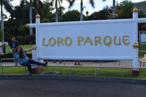 Loro Parque. Cel mai vizitat loc din Tenerife.