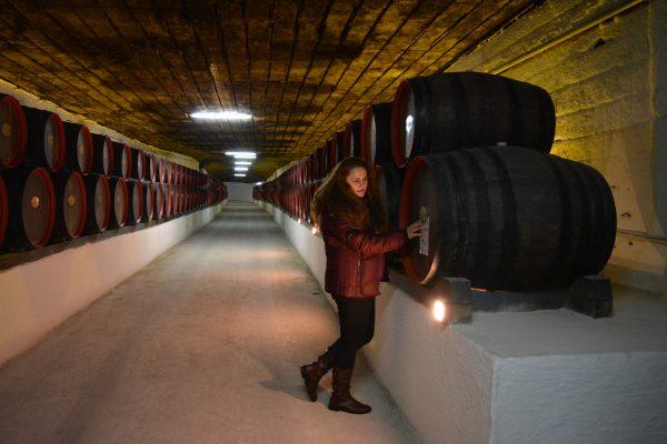 Galerii nesfarsite pline cu butoaie de vin