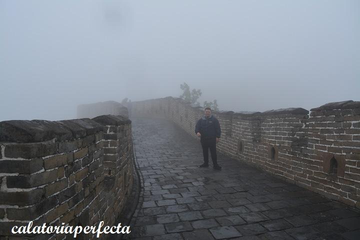 calatoria perfecta la marele zid