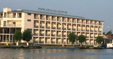 delta palace sulina