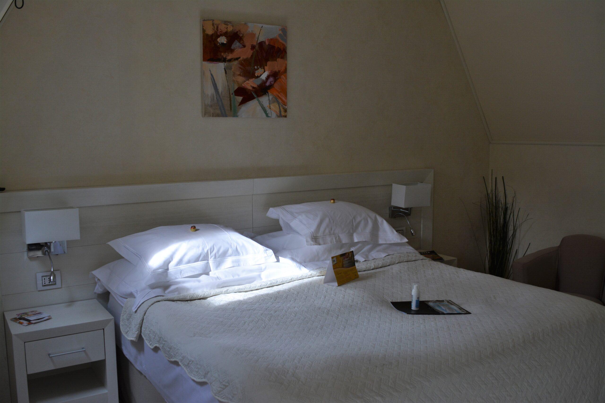 Ioana Hotels Sinaia