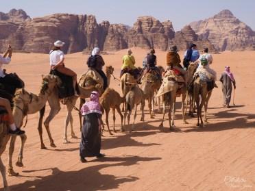 Cu camila - dromader in Wadi Rum
