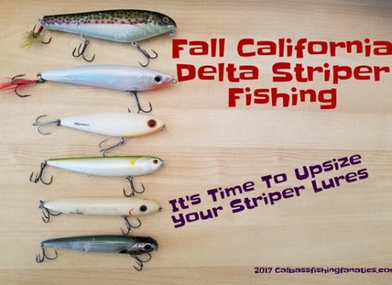 Fall California Delta Striper fishing