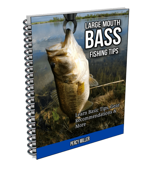 Large Mouth Bass Fishing Tips Report