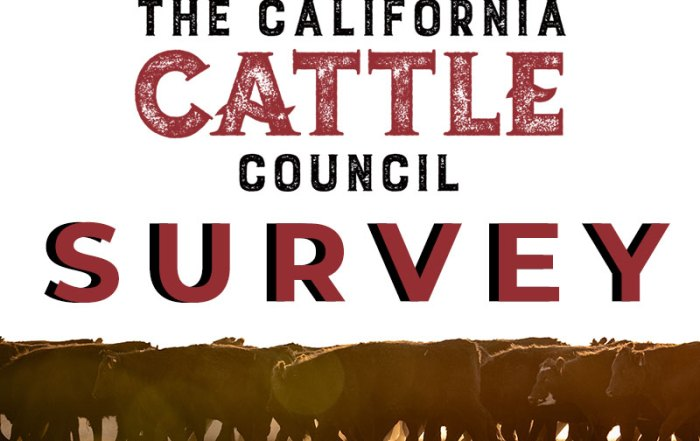 The California Cattle Council Survey