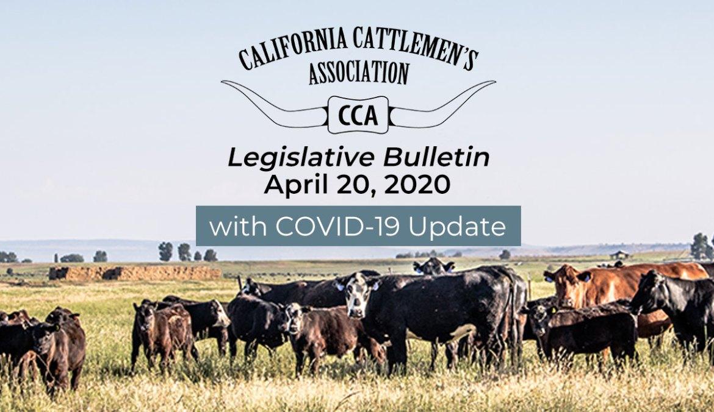 4/20 Legislative Bulletin with COVID-19 Update