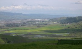 Coyote Valley
