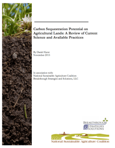 NSAC Carbon Sequestration Paper