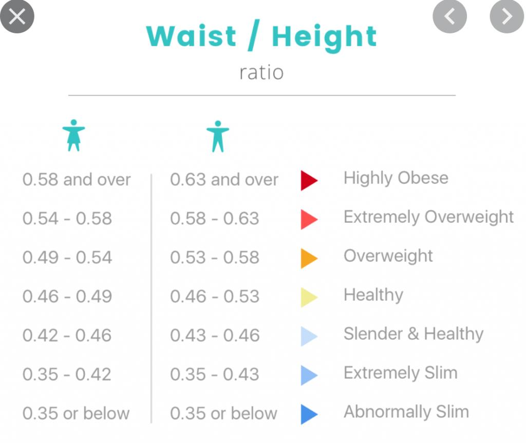 Waist To Height Ratio Calculator Whtr Calculator