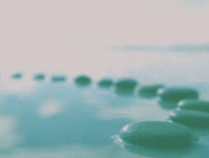 Aguas mineromedicinales y Medicina Preventiva