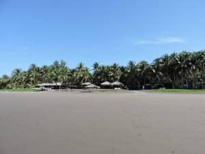 La Tortuga Verde beach