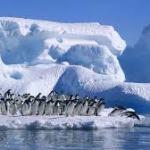 Antarctica thumb