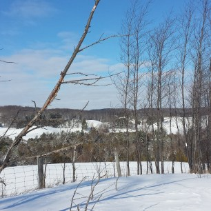Winter View From Hockley Valley Resort