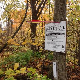 Vandalized Willoughby Road Access Sign