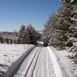 An Inviting Ski Trail
