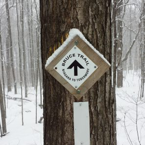 Niagara to Tobermory - winter