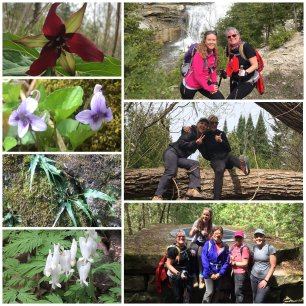 The Bruce Trail: Conservation and Hiking