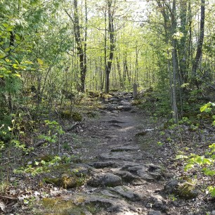 Trail at Silver Creek