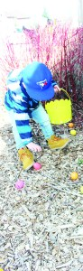 Hudson Byrne, 2, of Anthem was busy looking for eggs outside.