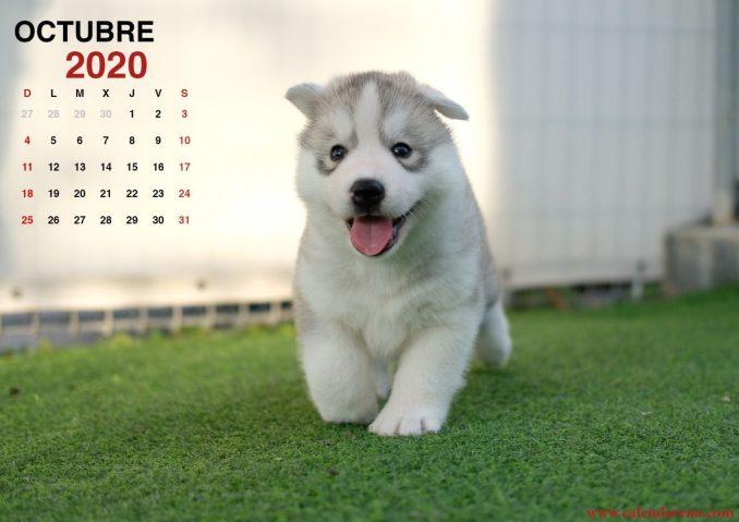 Calendario octubre 2020_2