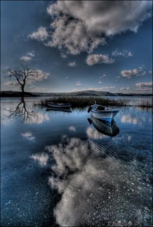 calendrier lunaire nature la vie sur terre 11