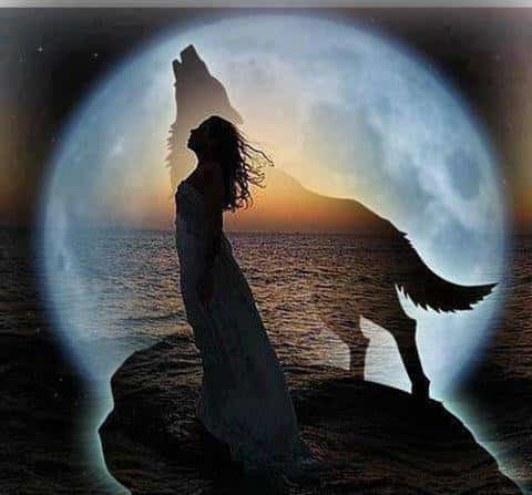 calendrier lunaire alerte prochaine pleine lune