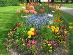 calendrier-lunaire-jardin-du-21-octobre