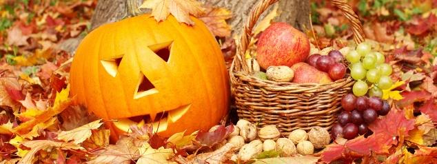 calendrier lunaire - jardiner avec la lune 2020 -octobre