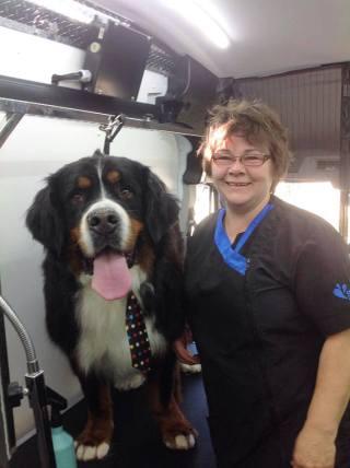 Fetching-fido-groomer-image-calgary-dog-life