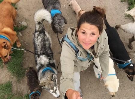 calgary-dog-life-dog-business-profile