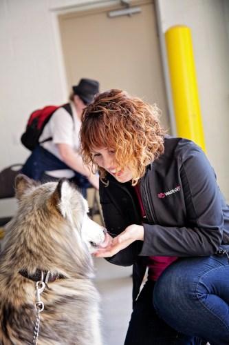 vets-to-go-staff-calgary-dog-event