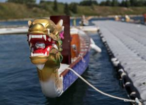 Read more about the article Calgary Dragon Boat Season 2021 – CANCELLED