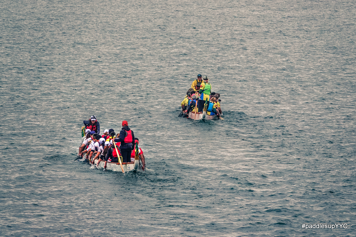 You are currently viewing Dragon Boat Returns!