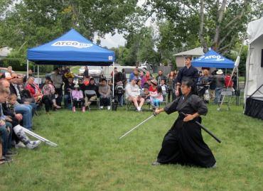 sword demo