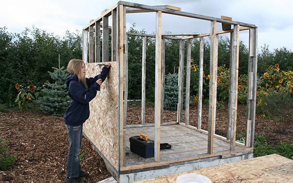 building chicken coop1