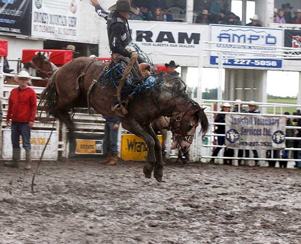 Thurston riding on the Sundance Kid at the Innisfail rodeo on June 15. Photo by Casey Richardson.