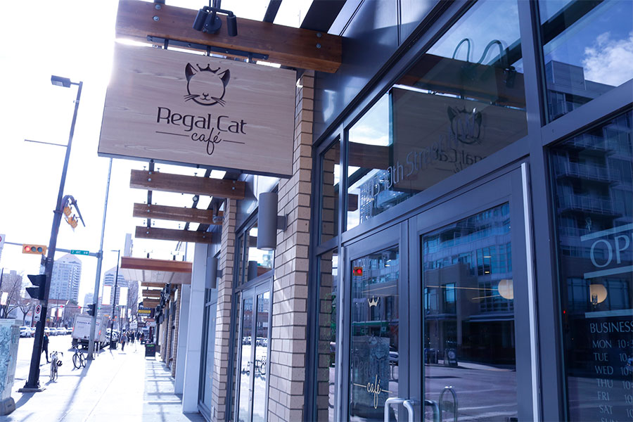 Outside sign of Cat Cafe