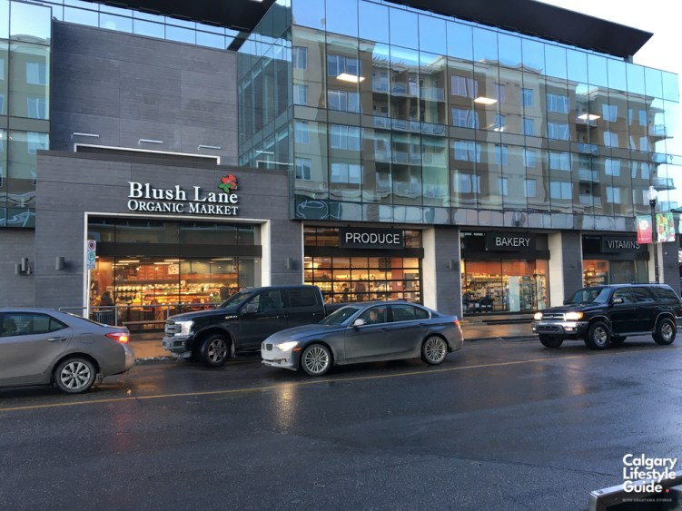 Blush Lane Marda Loop