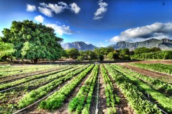 Seminar on Sustainable & Organic Practices in Southern California