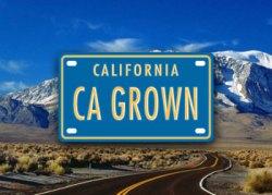 CA Grown campaign logo